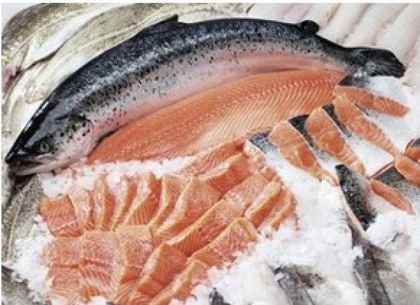 Охлаждение рыбы